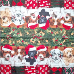 Napkin - Christmasdogs